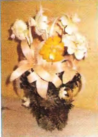 Ваза из шишек, цветы из стружек